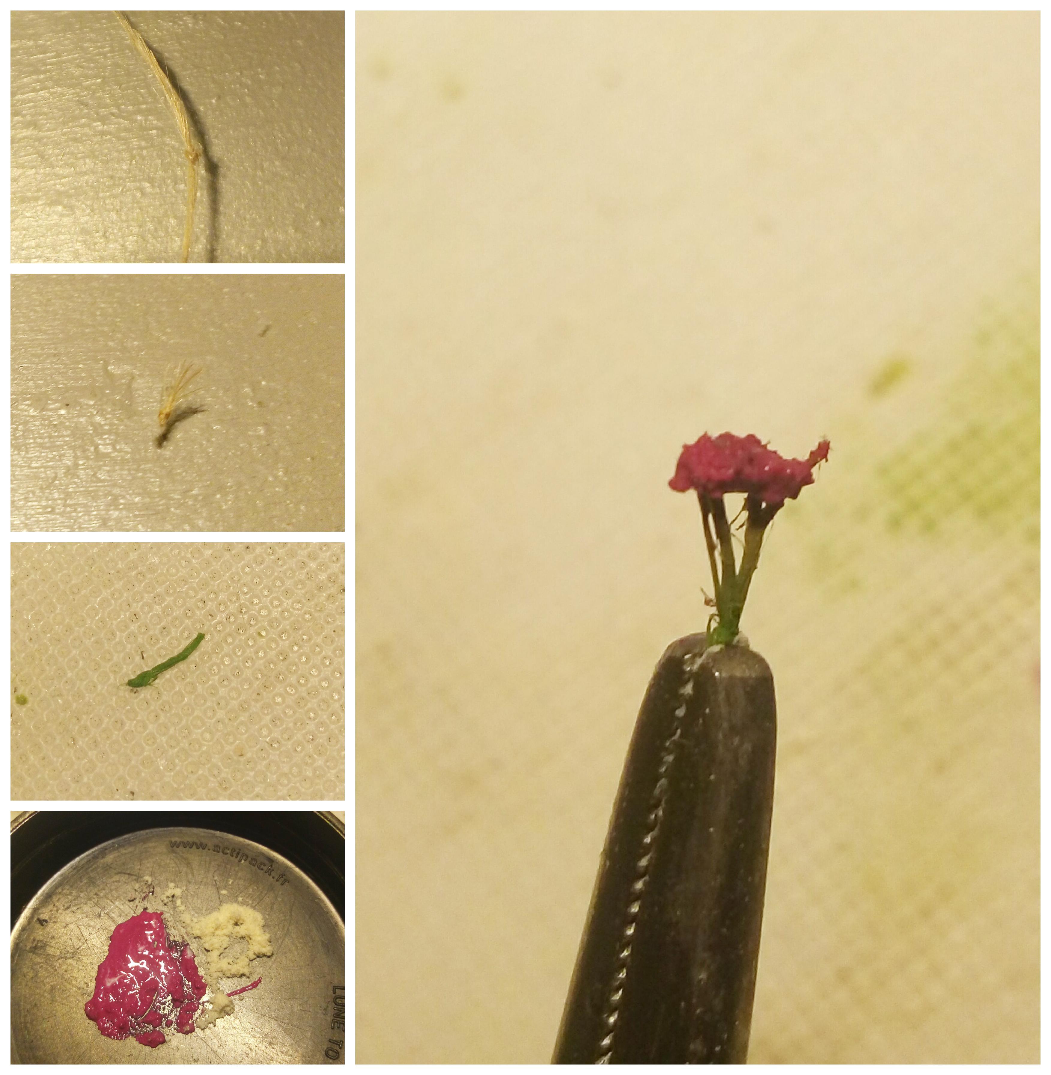 tuto-fleur.jpg
